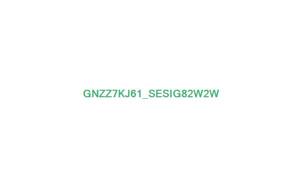 认证考试指南中文版